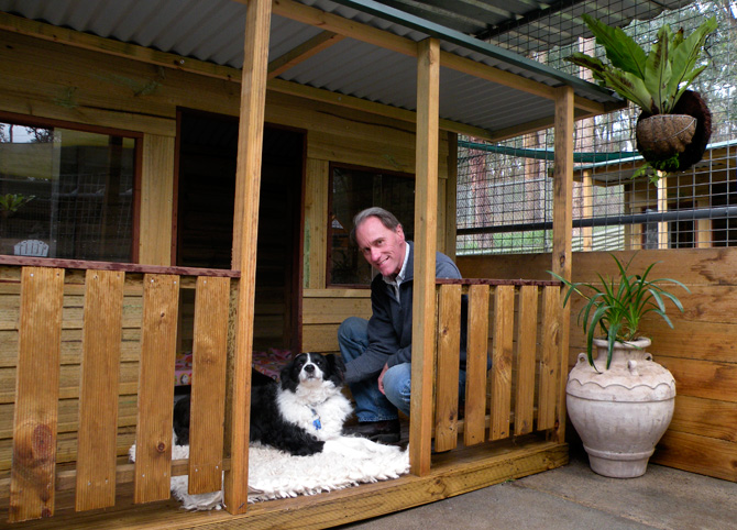 dog-boarding-kennels